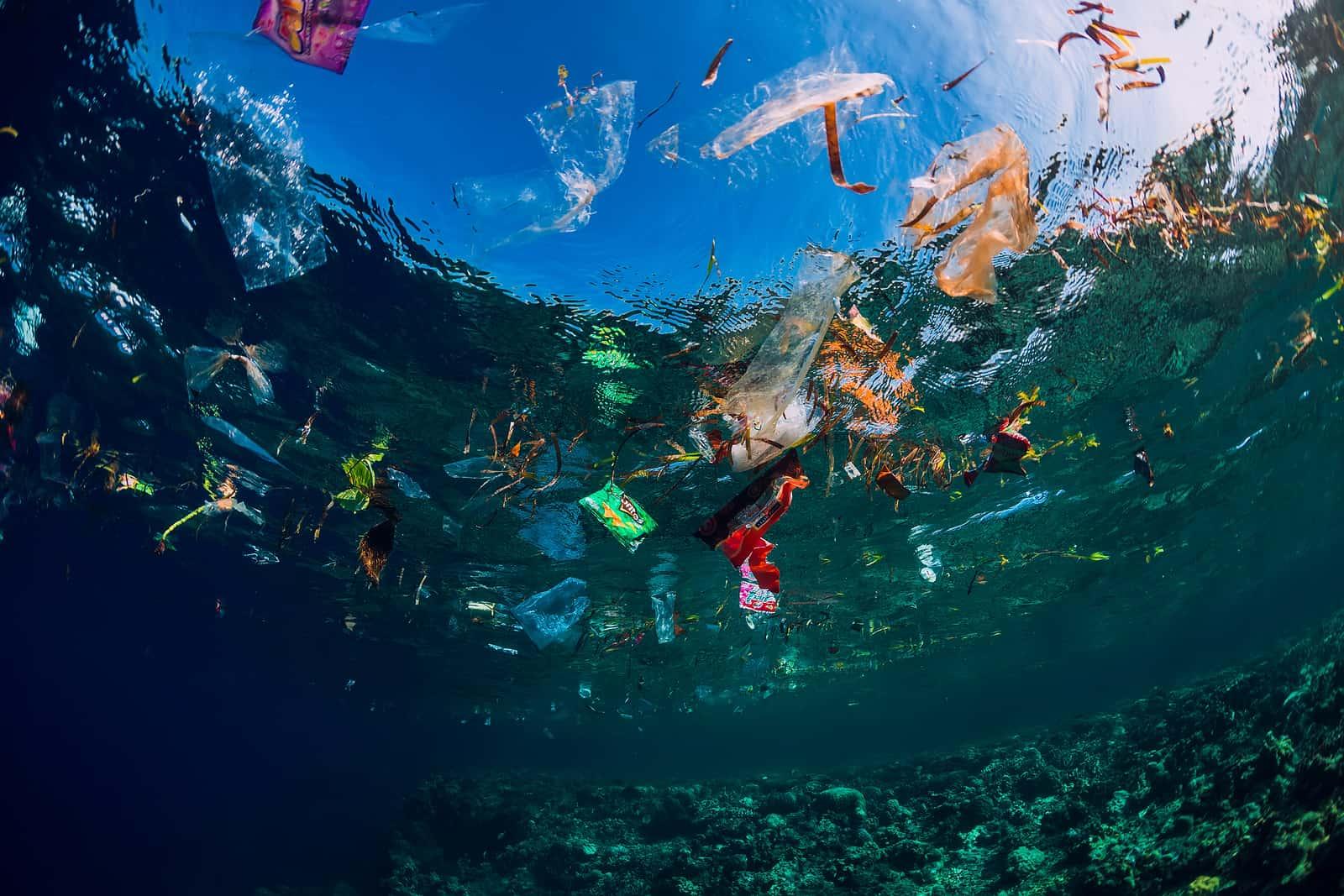 A descoberta da cidade perdida e a saúde dos oceanos