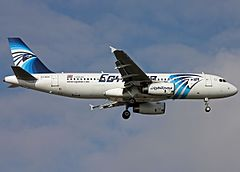 EgyptAir Flight 804 with 66 people on board crashes into the Mediterranean Sea en route from Paris to Cairo.