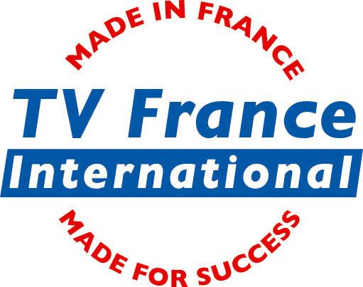 Televisão na França