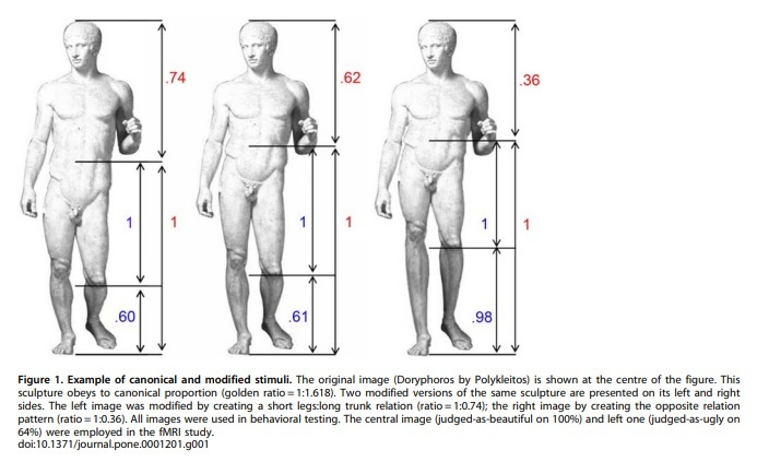 The Golden Beauty: Brain Response to Classical and Renaissance Sculptures, by Di Dio et al.