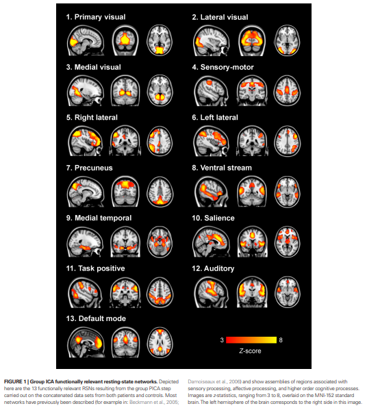 A Systematic Review of Resting-State Functional-MRI Studies in Major Depression, by Wang et al.
