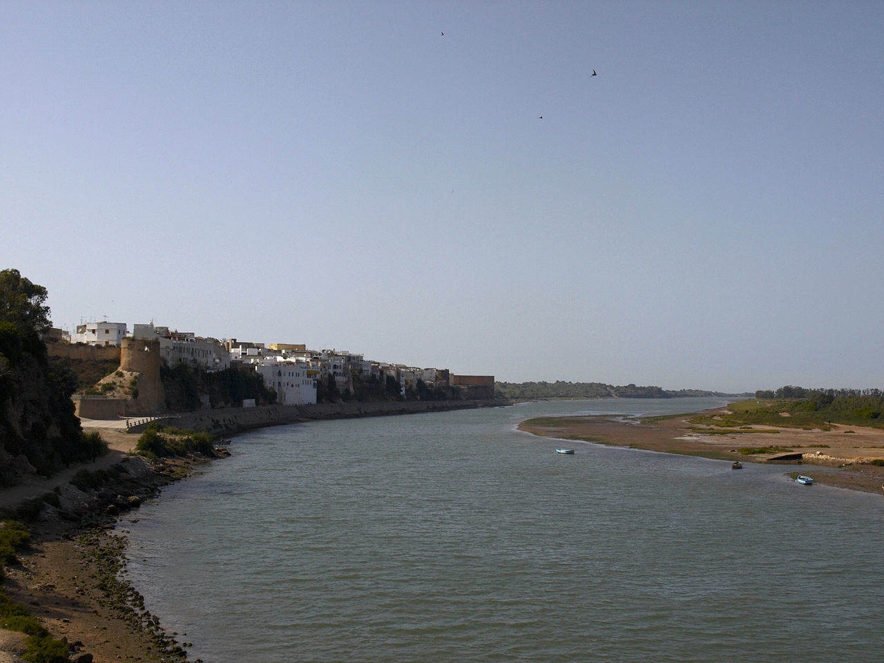 Custeou a expedição que conquistou Azamor, em Marrocos, em 1513 - (D. Jaime I, 4.º Duque de Bragança)